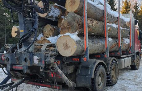Vasimil doo, proizvodnja i prodaja proizvoda od drveta, bukov parket, bukovi elementi, bukova friza